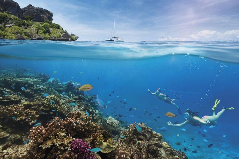 Fiji Dive Trip