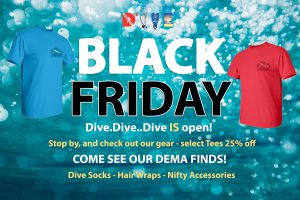 D3 is Open Black Friday 2019