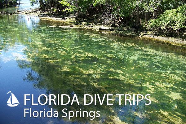 FloridaSprings